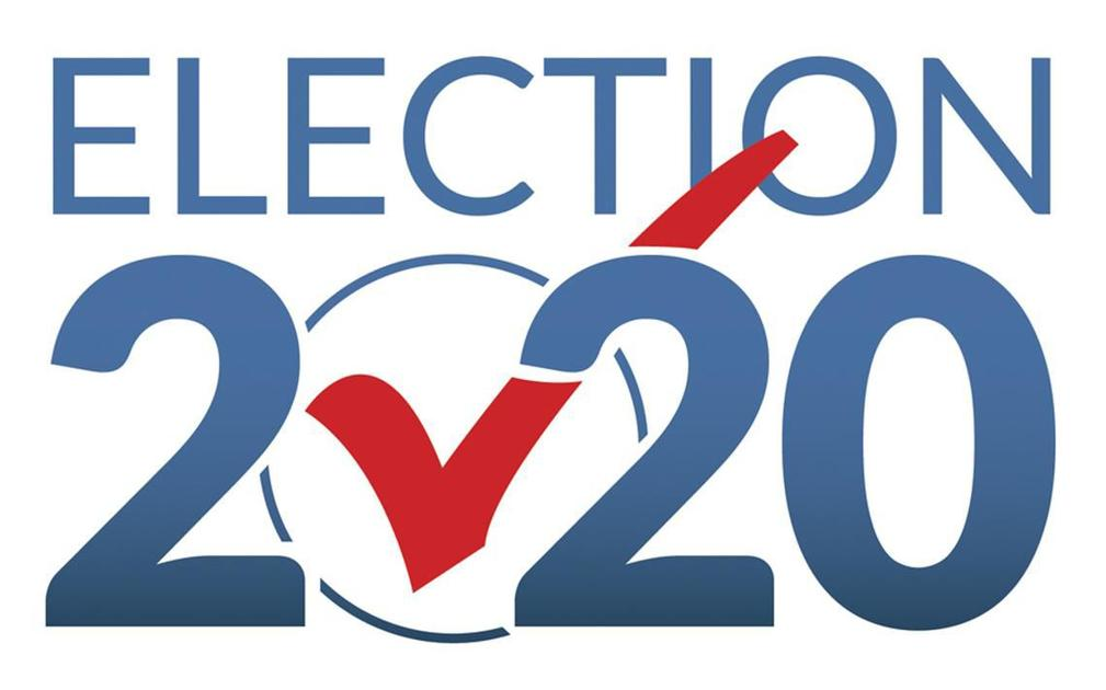 Election 2020 pic